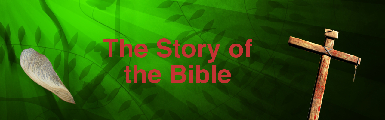 The Story of the Bible Series